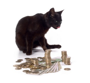 Cat costs - black cat licking his lips over piles of money