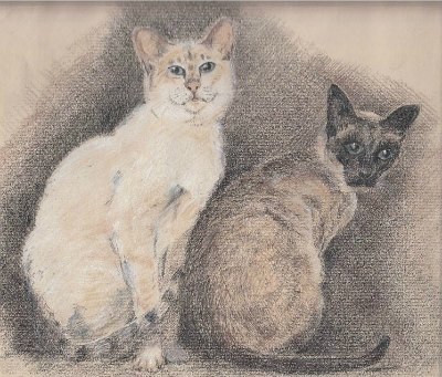 Siamese cats Thomas and Purdy, drawn by an artist