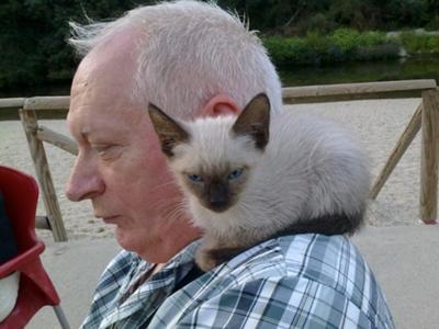 Already a shoulder cat