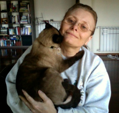 Siamese cat on shoulder