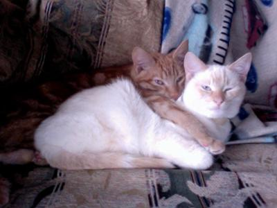 Willis with his brother, Bruce